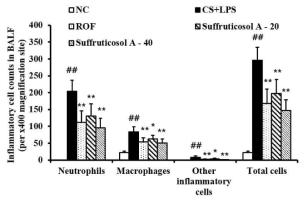 천식유발 동물모델에서 suffruticosol A의 염증세포 유입 억제효과