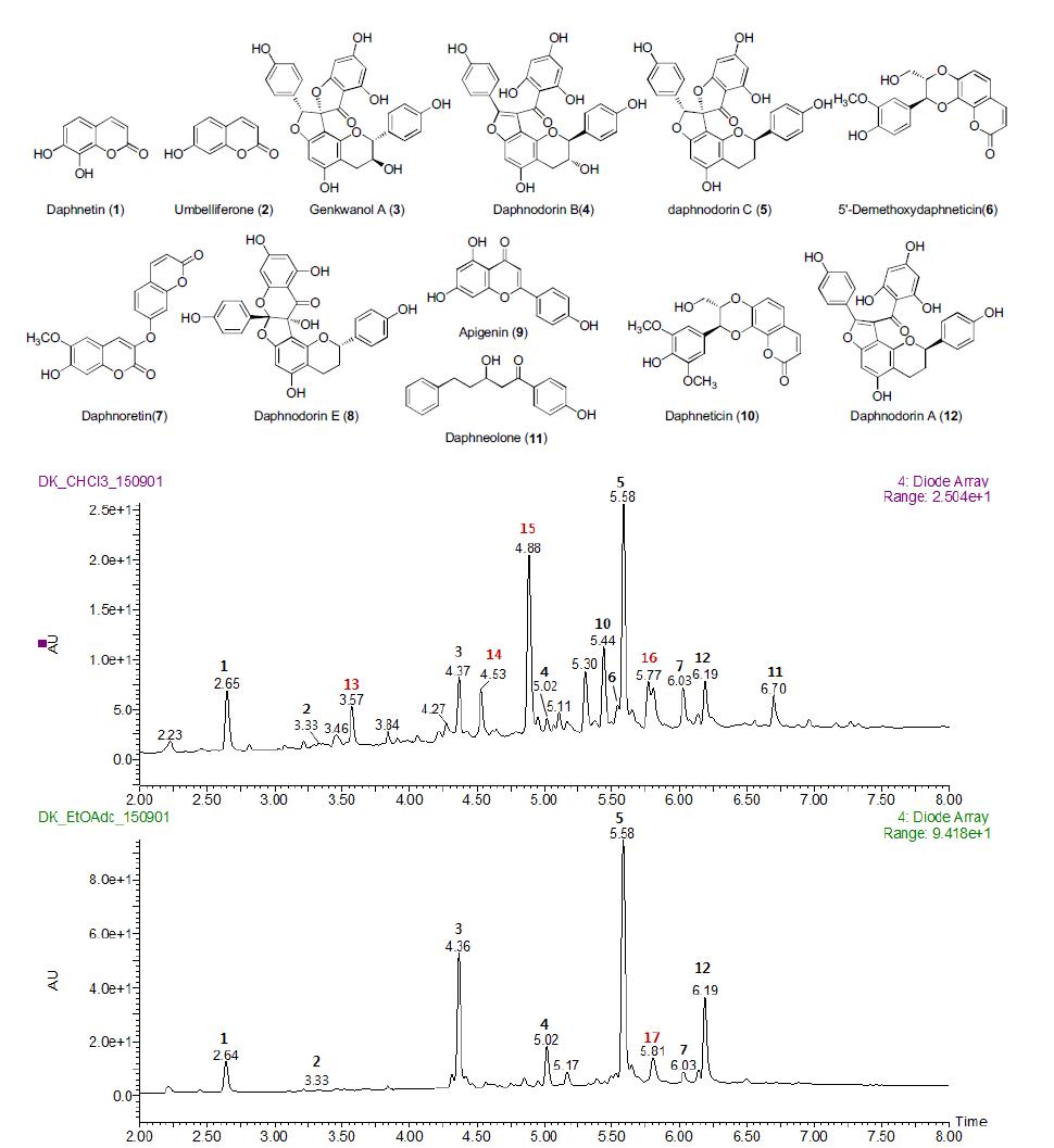 백서향 줄기에서 분리된 화합물들의 CHCl3 및 EA층 profile 결과