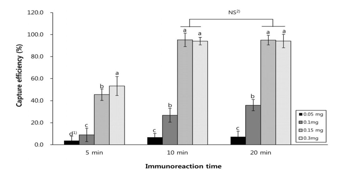 면역자성입자의 농도 및 시간에 따른 회수율