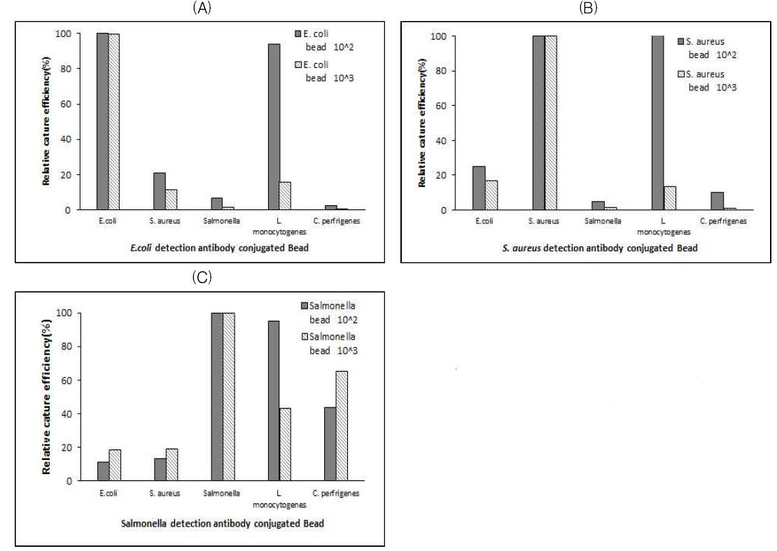 항체·자성입자 복합체의 균주 특이성. (A) E. coli 검출용 항체·자성입자 복합체를 이용하였을 때 (B) S. aureus 검출용 항체·자성입자 복합체를 이용하였을 때 (C) Salmonella 검출용 항체·자성입자 복합체를 이용하였을 때 비특이적 검출율