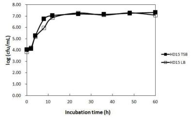 Bacillus tequilensis HD15의 배지 조성에 따른 생육특성