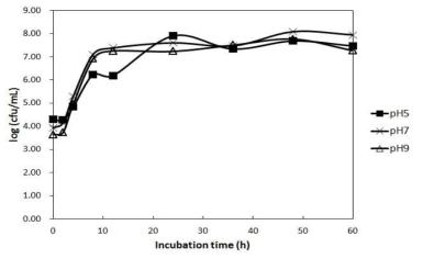 Bacillus tequilensis HD15의 배지 초기 pH에 따른 생육특성