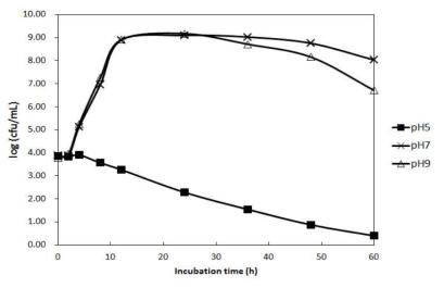 Lactococcus lactis subsp. lactis KCCM40104의 배지 초기 pH에 따른 생육특성