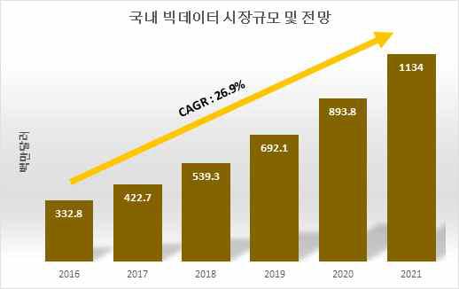 국내 빅데이터 시장규모 및 전망 (한국정보화진흥원, 2016)