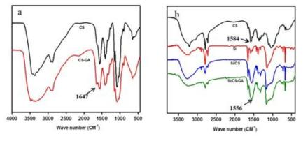 (a) FTIR spectra of CS and CS-GA film; (b) FTIR spectra of CS, Si, Si/CS, and Si/CS-GA powder