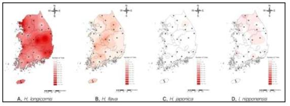 SFTS바이러스를 매개한다고 알려져 있는 A.작은소피참진드기, B. 개피참진드기, C. 일본참진드기, D. 뭉뚝참진드기의 국내 분포현황 (2015)