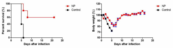 Alum adjuvant가 혼합된 NP-his로 면역한 실험동물모델에서 SFTSV 감염 후, 생존율(좌)과 체중변화(우)