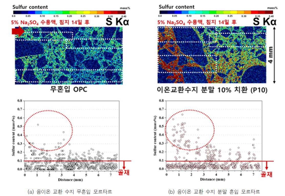 Na2SO4 수용액에 침지된 모르타르 단면의 EPMA 결과