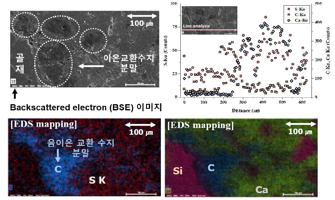 Scanning electron microscopy를 이용한 음이온 교환수지 미분말이 치환된 시멘트 보수용 모르타르의 황 함유량 측정 결과