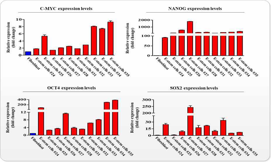 다양한 유전자 분석을 통한 분석을 통한 자궁 줄기세포의 줄기세포성 확인