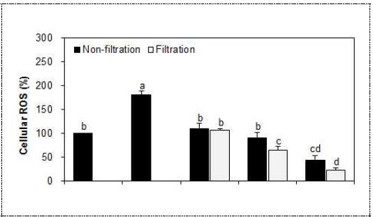 발아 및 막여과 추출물의 세포 ROS 제거 효과