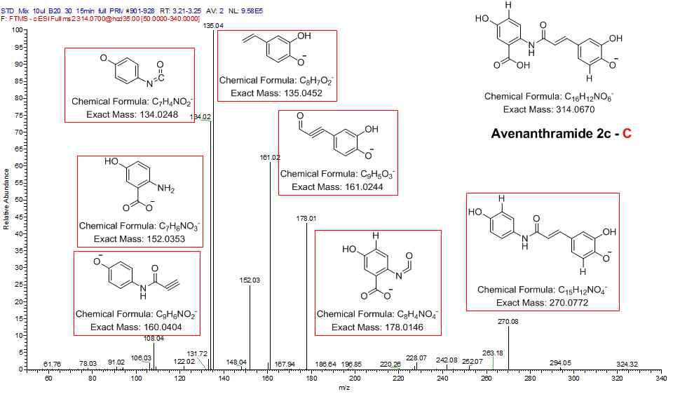 AVN C 표준품의 product ion 및 각 해당 ion의 예상 구조